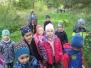 Vycházka do lesa